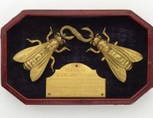 Clasp bearing Napoleon's bee heraldry. Copyright Leven's Hall.