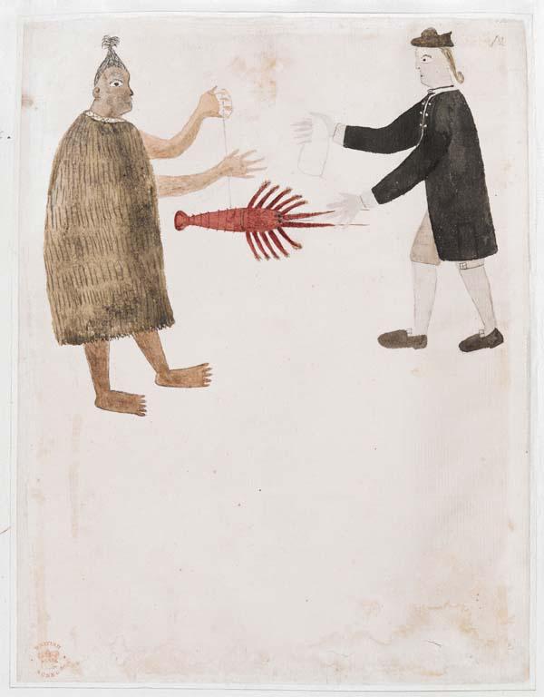 a drawing of a Maoria man and an eighteenth century man