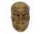 A brown death mask showing the shape and contours of James Hope's face