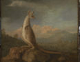 George Stubbs' 'The Kongouro from New Holland' (Kangaroo)